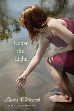 under the light cover