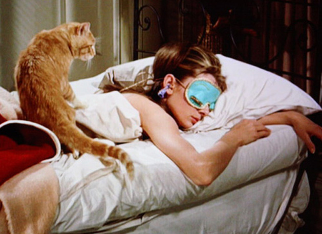 Breakfast at Tiffany's feed your cat